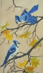 Blue Jay Talk